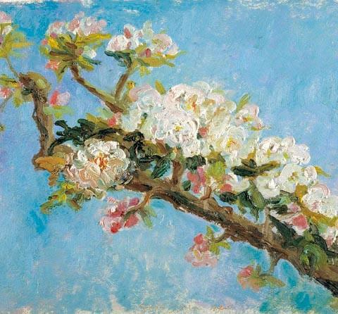 156- Primavera, Manzano en flor_med