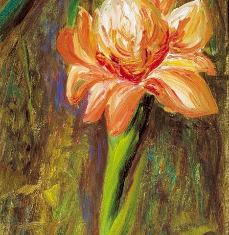 178- Flor del jardin de Santiago_med